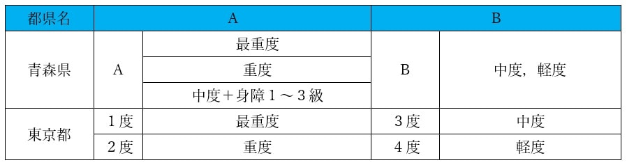 自治体ごとに設定される障害の区分とその判定基準