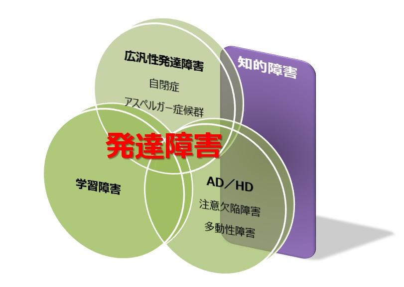 日本における発達障害と知的障害との関係