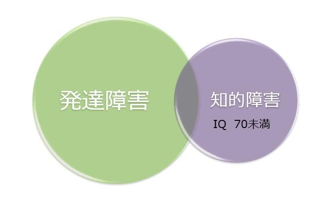 日本における発達障害と知的障害の関係